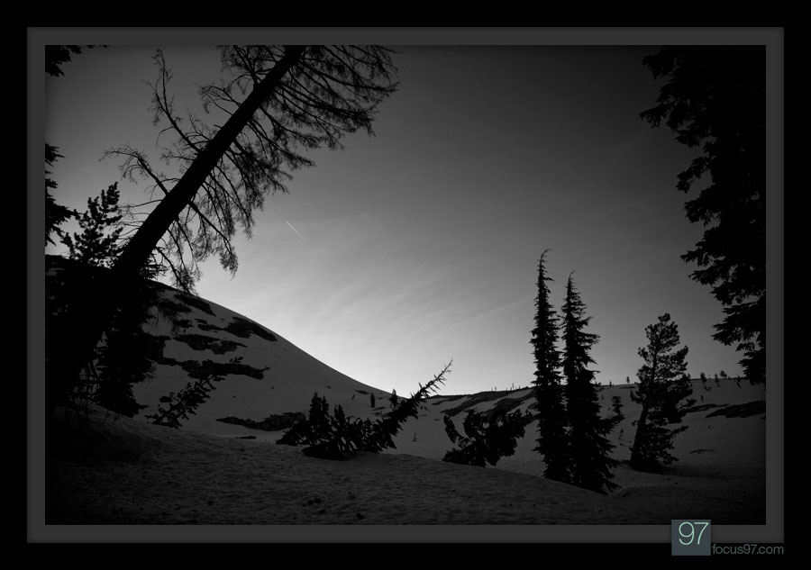 My camp, passed dusk. Trees bent from... past avalanches?