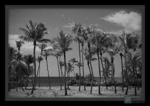 dominican-republic-8